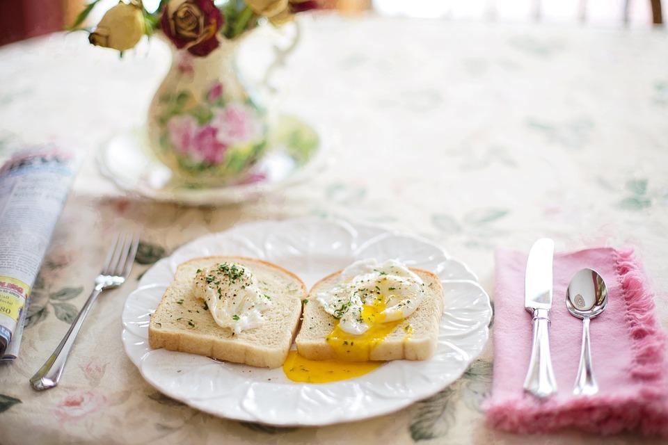 eieren fipronil affaire mama van dijk blogger