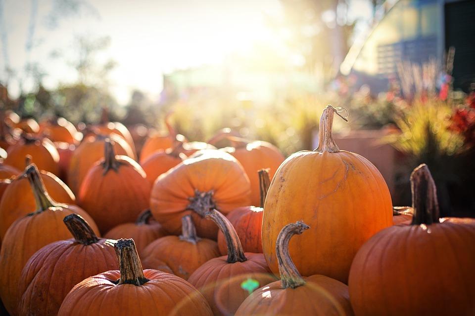 halloween, heilige geest, nachtmerries, peuter, dromen, mama van dijk, mamablog