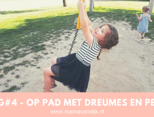 vlog mamablogger mama van dijk, met dreumes en peuter op stap