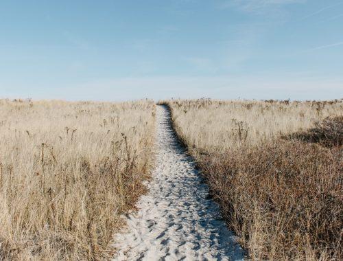 duurzaam leven, een nieuwe reis op mama van dijk