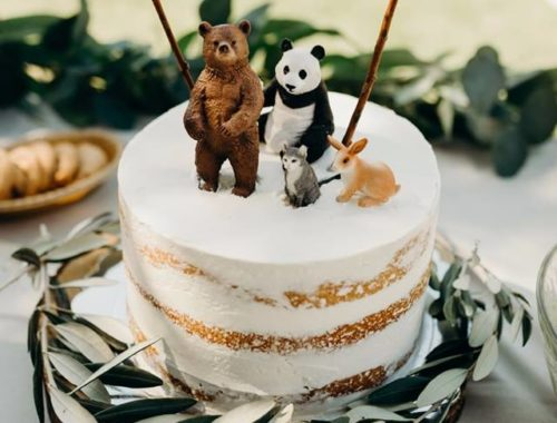 naked cake, wild one, eerste verjaardag taart, dieren