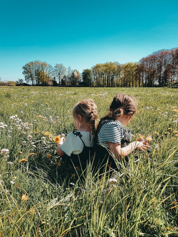 christelijke opvoeding, bemoediging, mama van dijk, mamablog