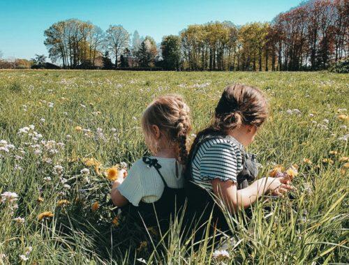 reizen met kinderen, dakkoffers thule